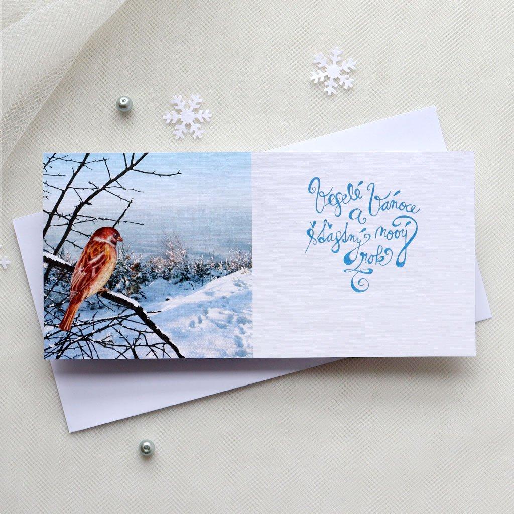 modry vrabec vanocni prani1