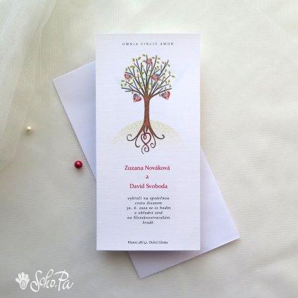 ozameni strom