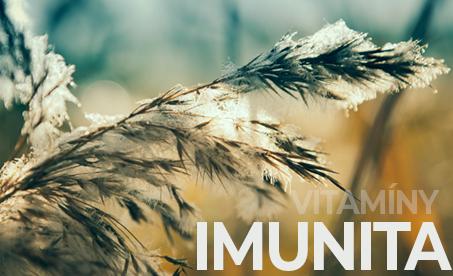Podpora imunity v zimě