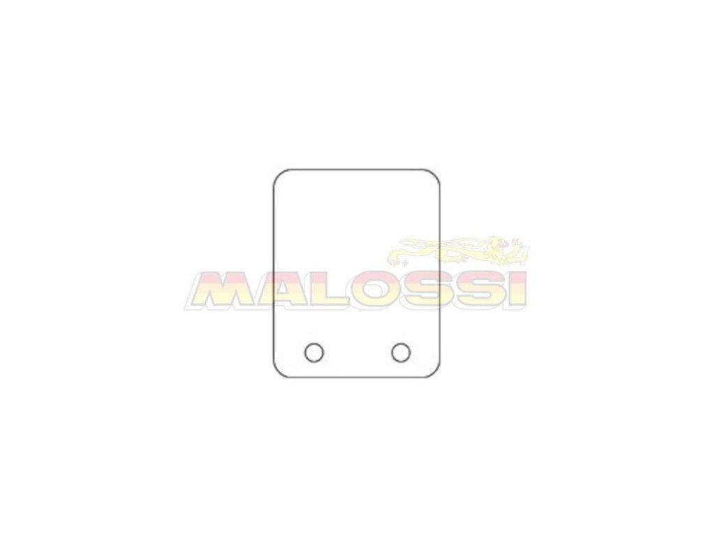Náhradní karbonové lístky Malossi 2ks 0,30 mm 90۫ MHR VL13 125-180ccm
