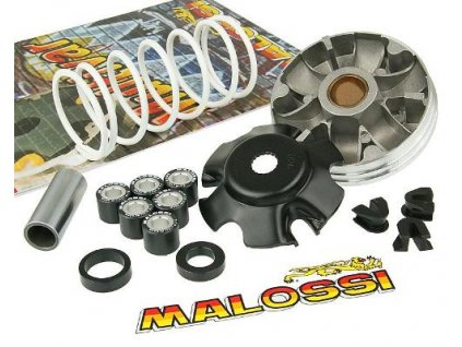 Variátor Malossi Multivar 2000, Piaggio
