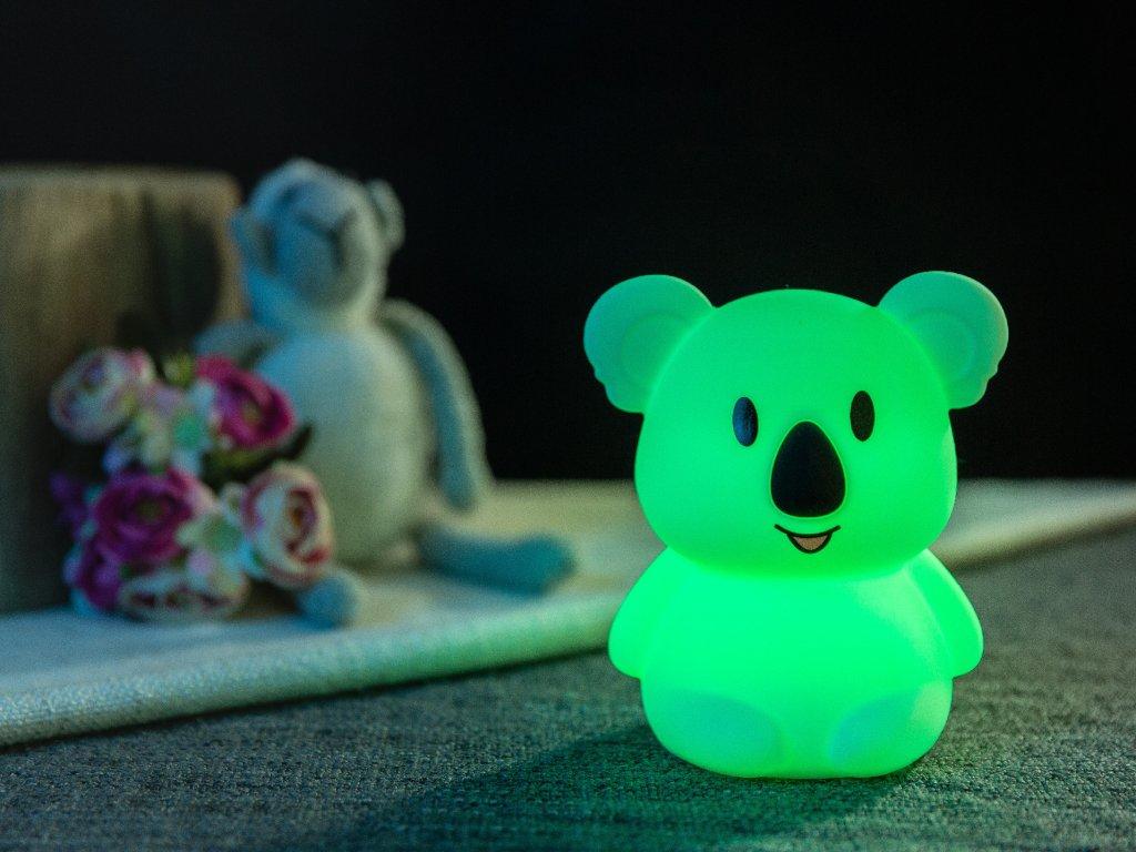 koala lampicka