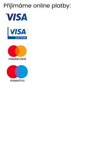Online platby
