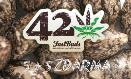 Fast Buds 5 + 5 zdarma