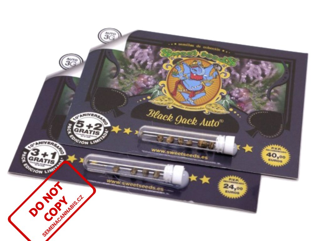 Black Jack AUTO   Sweet Seeds