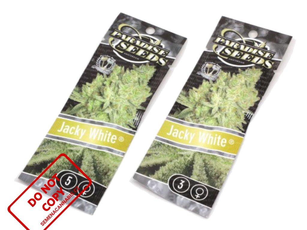 Jacky White   Paradise Seeds