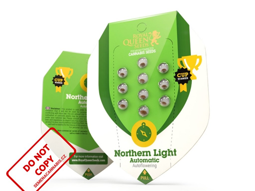 Northern Light AUTO   Royal Queen Seeds