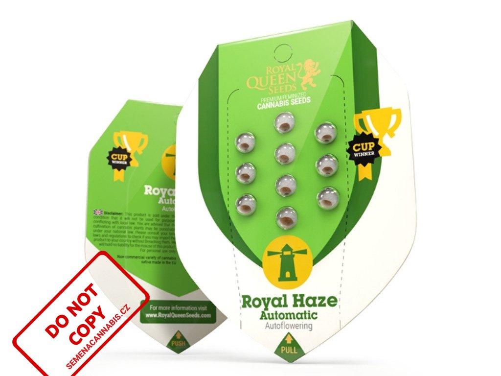 Royal Haze AUTO | Royal Queen Seeds
