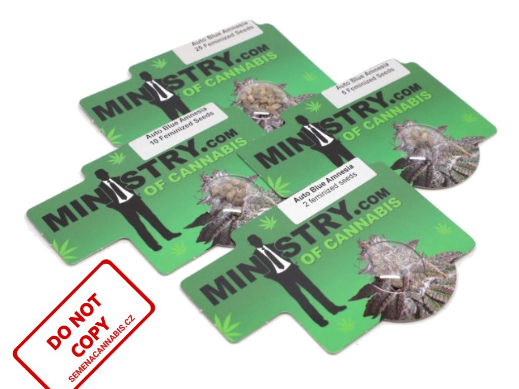 AUTO Blue Amnesia | Ministry Of Cannabis