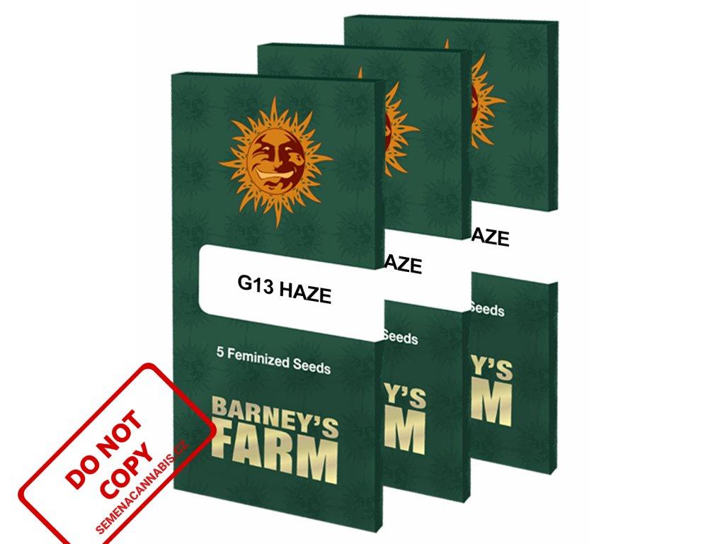 G13 Haze   Barneys Farm