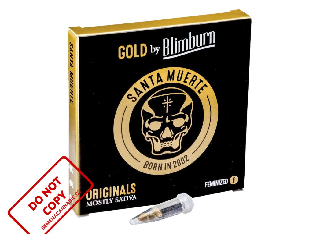 Santa Muerte | Blimburn Seeds