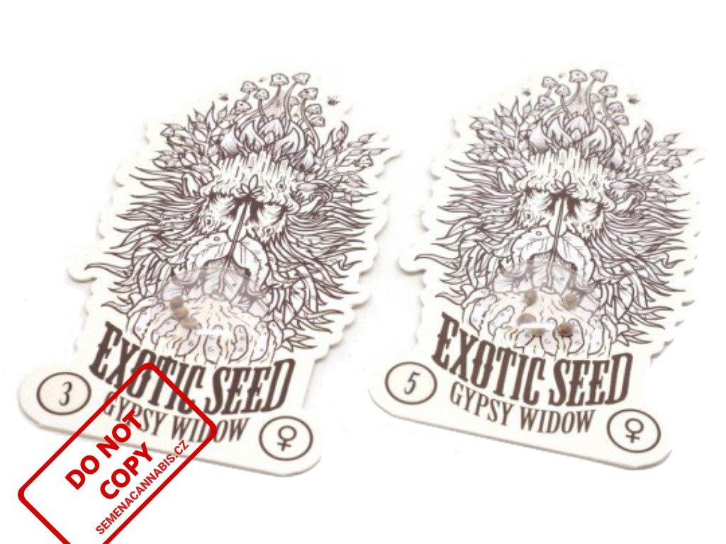 Gypsy Widow | Exotic Seeds