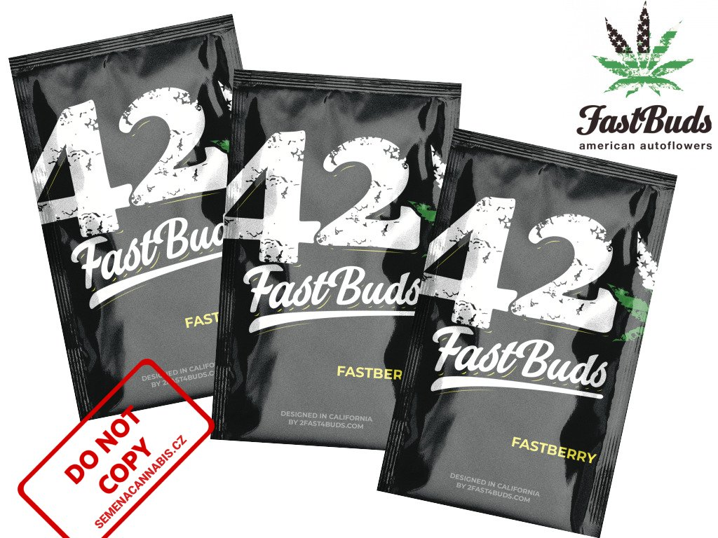 Fastberry Auto   Fast Buds