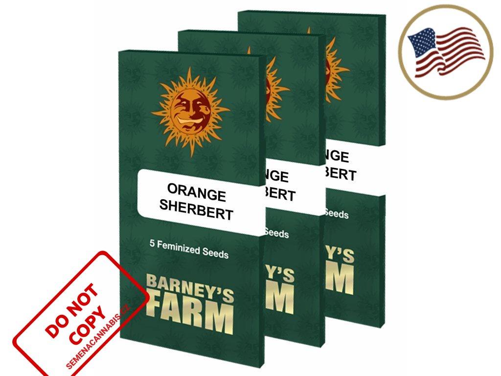 Orange Sherbert ™ | Barneys Farm