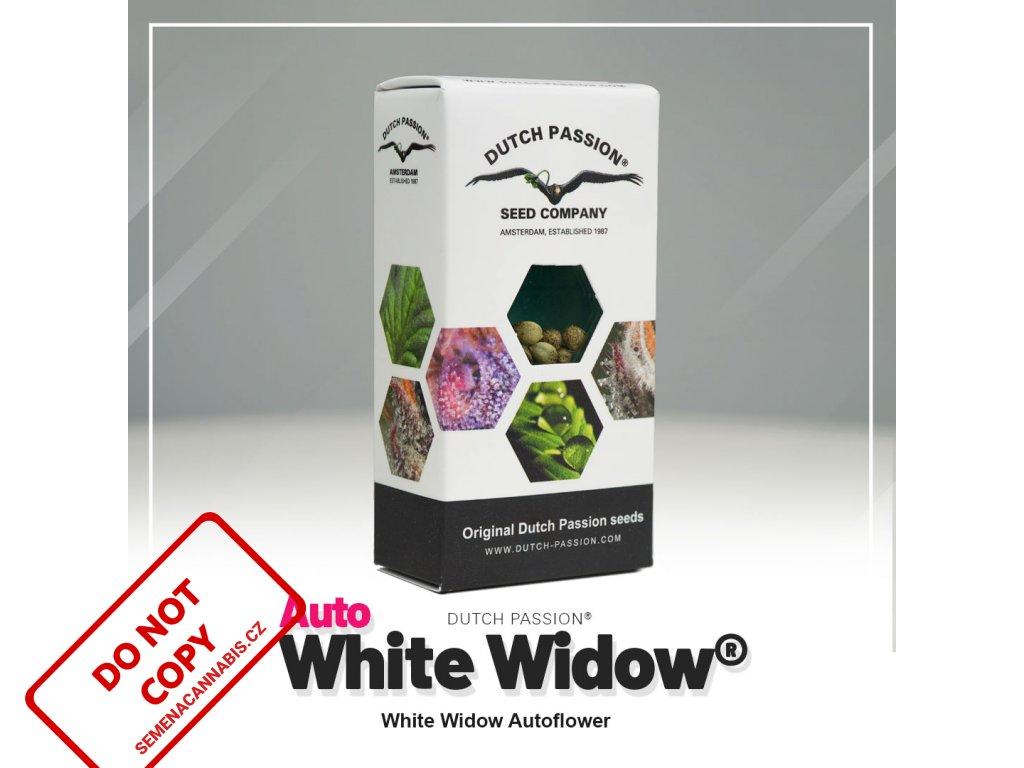 White Widow AUTO (Počet ks Feminizované 7)