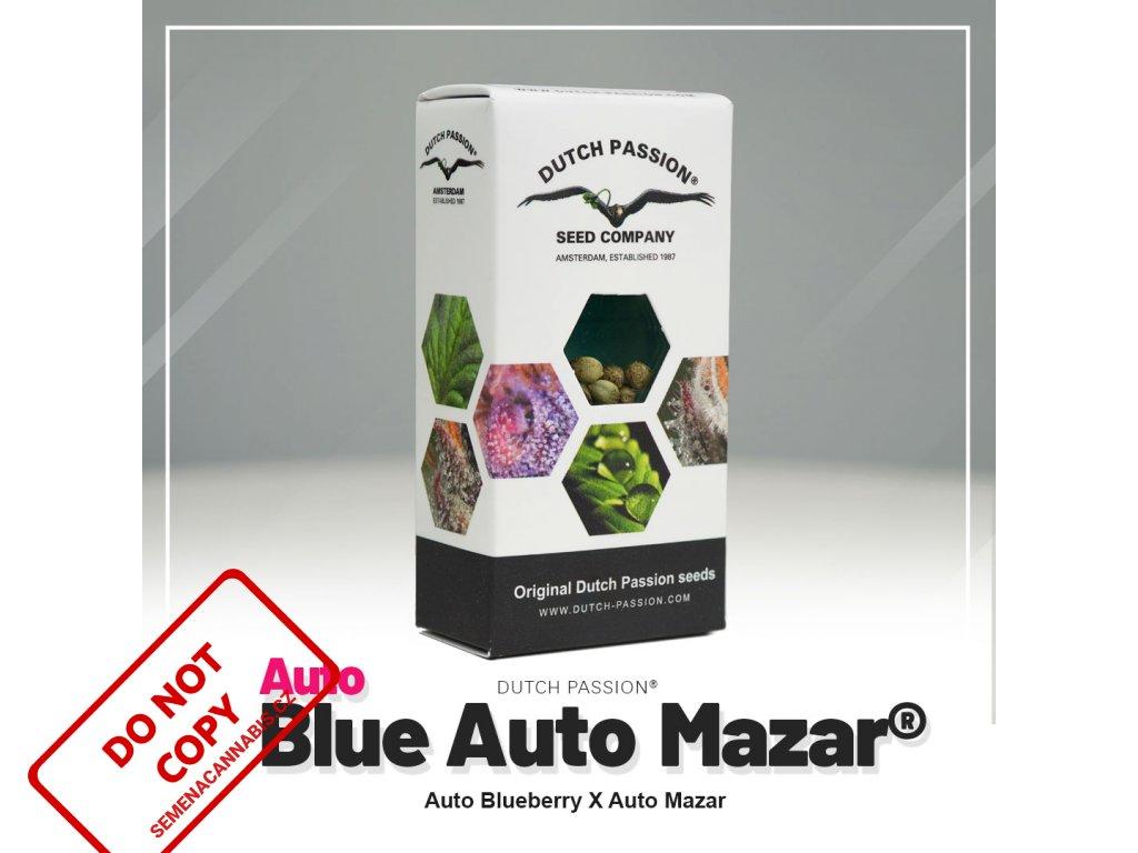 Blue Mazar AUTO   Dutch Passion