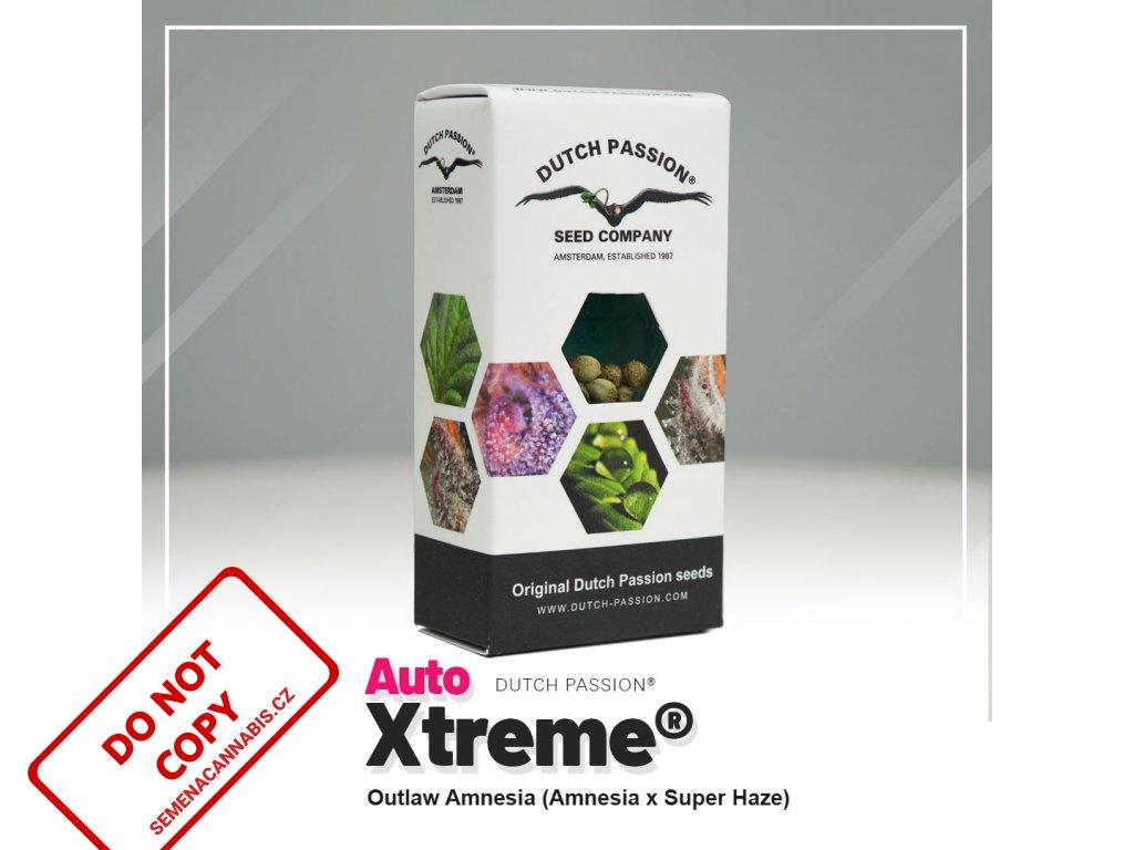 AUTO Xtreme | Dutch Passion