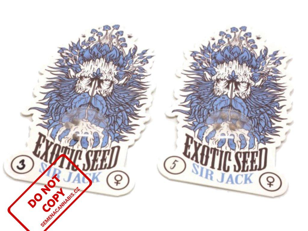 Sir Jack | Exotic Seeds