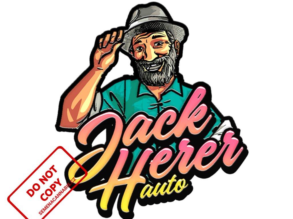 Original Auto Jack Herer   Fast Buds
