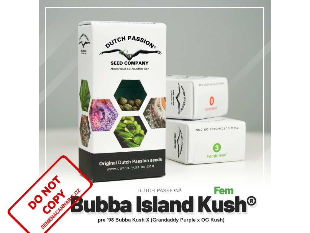 Bubba Island Kush® | Dutch Passion