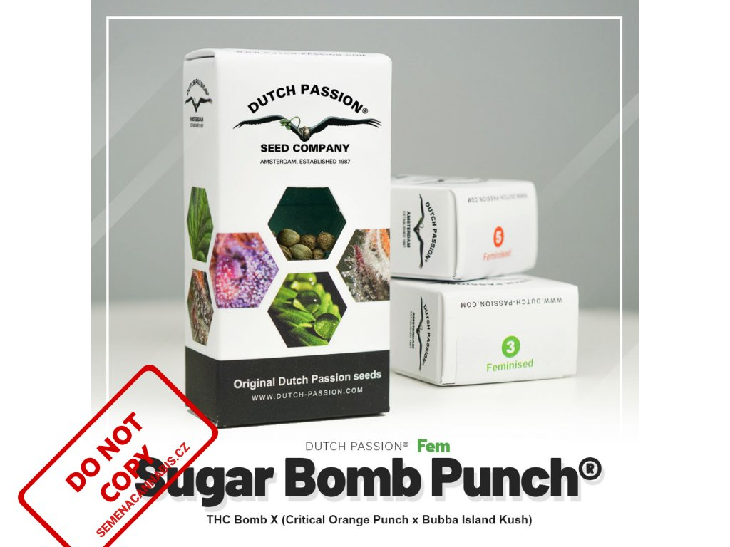 Sugar Bomb Punch® | Dutch Passion