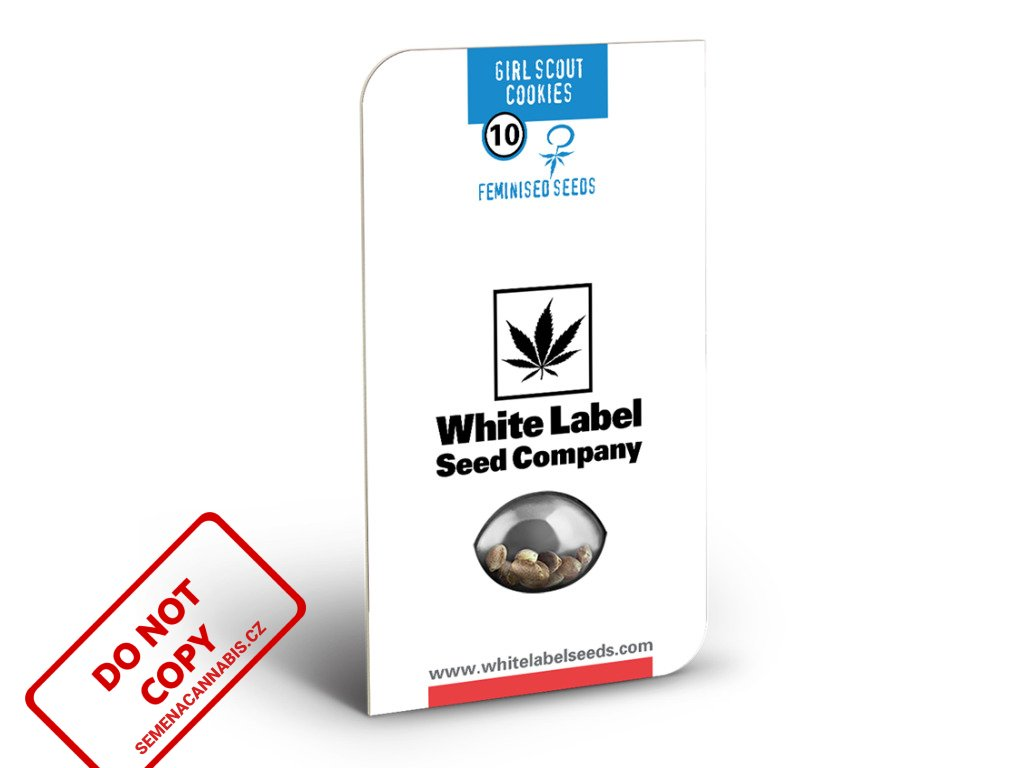 Girl Scout Cookies - American Line - White Label   Sensi Seeds