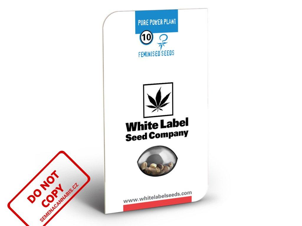 Pure Power Plant - White Label   Sensi Seeds
