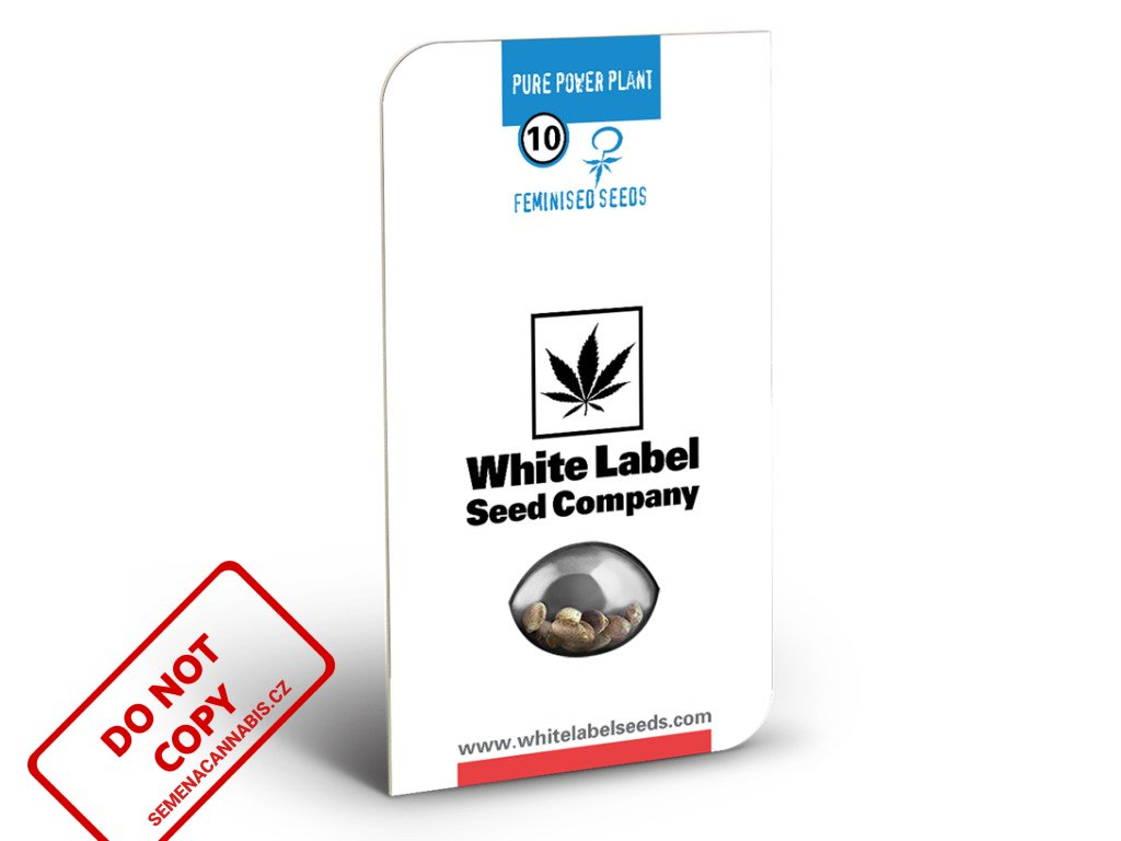 Pure Power Plant - White Label | Sensi Seeds