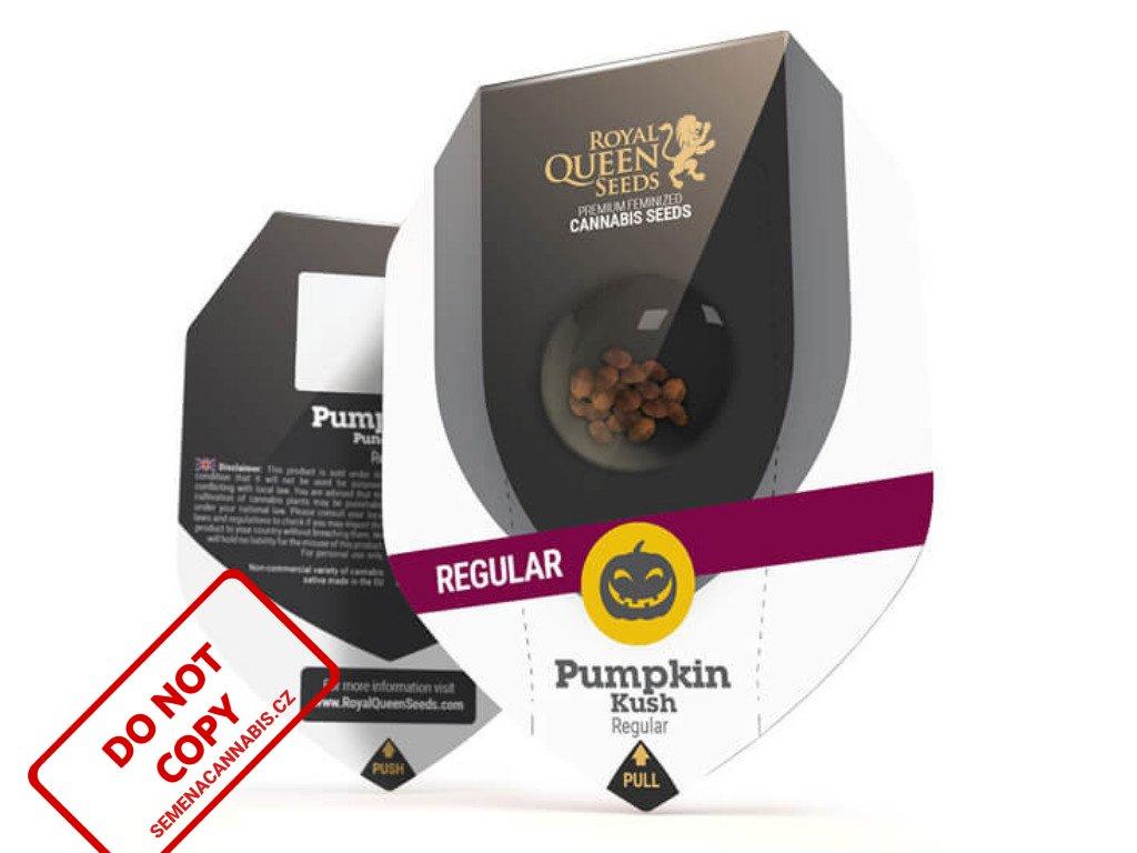 Pumpkin Kush - Reg. | Royal Queen Seeds