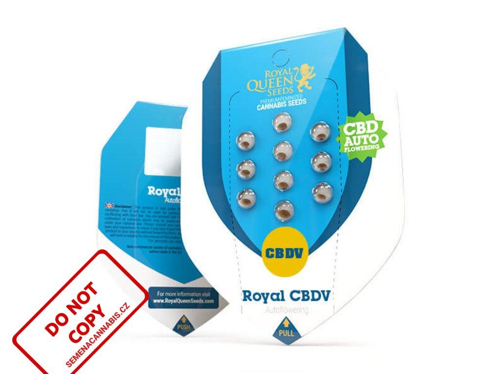 CBDV Royal AUTO   Royal Queen Seeds