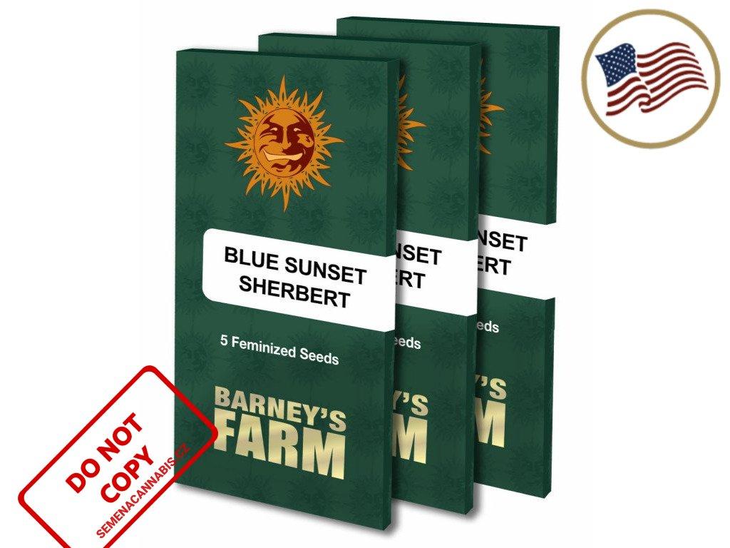 Blue Sunset Sherbert™ | Barneys Farm