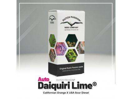 Daiquiri Lime AUTO | Dutch Passion
