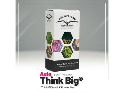 Think Big AUTO | Dutch Passion