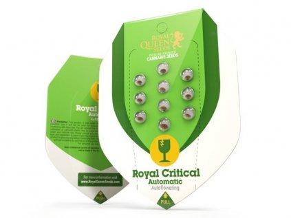 Royal Critical AUTO | Royal Queen Seeds