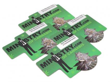AUTO Mandarin Haze | Ministry Of Cannabis