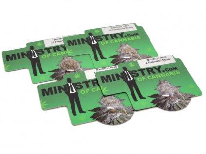 Mandarin Haze | Ministry Of Cannabis