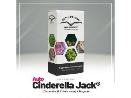 AUTO Cinderella Jack | Dutch Passion