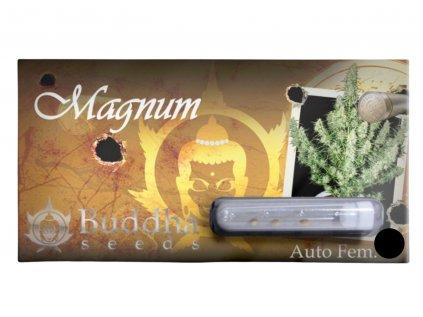Magnum Auto | Buddha Seeds