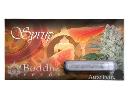 Syrup Auto   Buddha Seeds