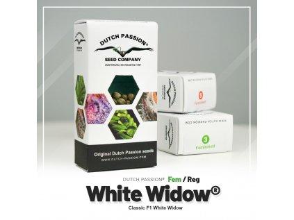 White Widow | Dutch Passion