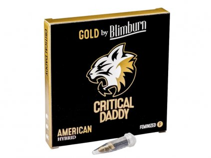 Critical Daddy Purple | Blimburn Seeds ((Ks) Feminized 3)
