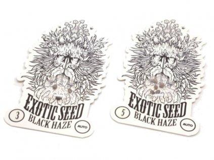 Black Haze Auto | Eva Seeds