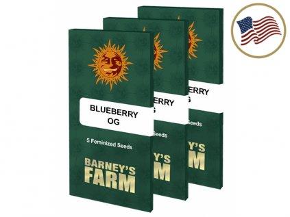 Blueberry Og | Barneys Farm