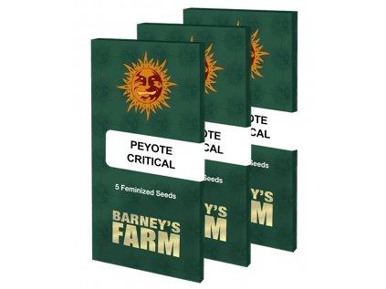 Peyote Critical™ | Barneys Farm