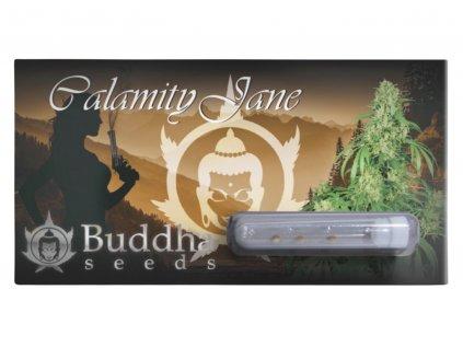 Calamity Jane Auto   Buddha Seeds