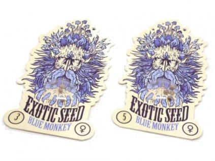 Blue Monkey | Exotic Seeds