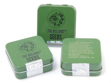 Strawberry Ice | The Bulldog Seeds
