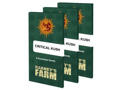Critical Kush™ | Barneys Farm