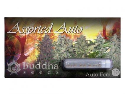 Assorted AUTO | Buddha Seeds