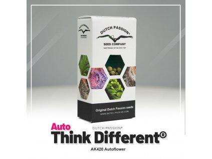 Think Different AUTO | Dutch Passion